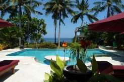 bali-beachfront-villa-for-sale-view