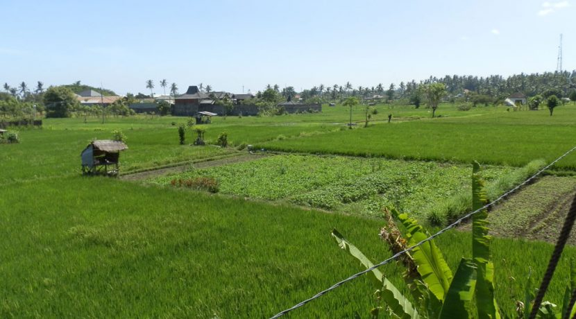 north-bali-lovina-town-villa-view