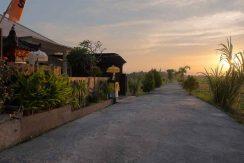 bali lovina house for sale access