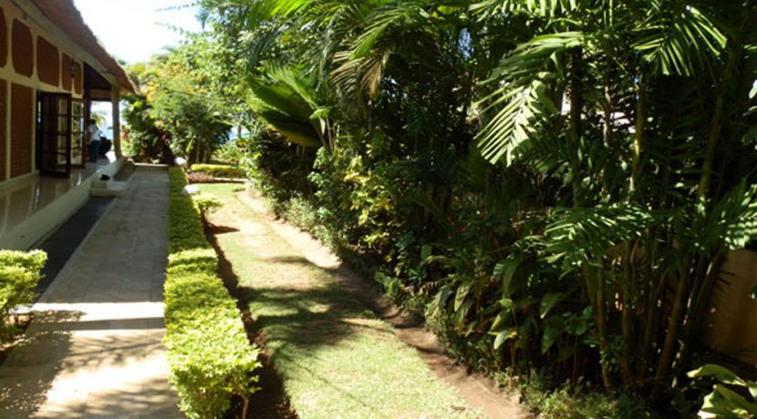 bali-lovina-beachfront-villa-for-sale-garden