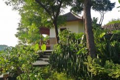 hotel for sale lovina bali bungalow