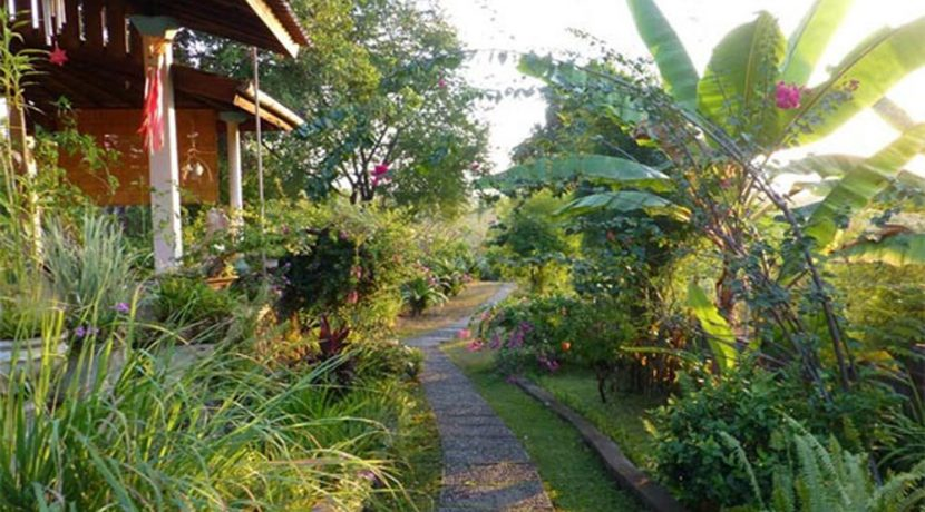 hotel for sale lovina bali bungalow access