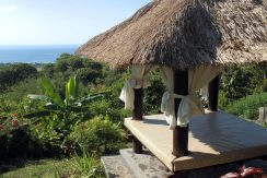north-bali-lovina-hotel-resort-for-sale-bali-view