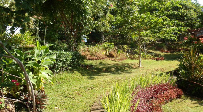 north-bali-lovina-hotel-resort-for-sale-garden