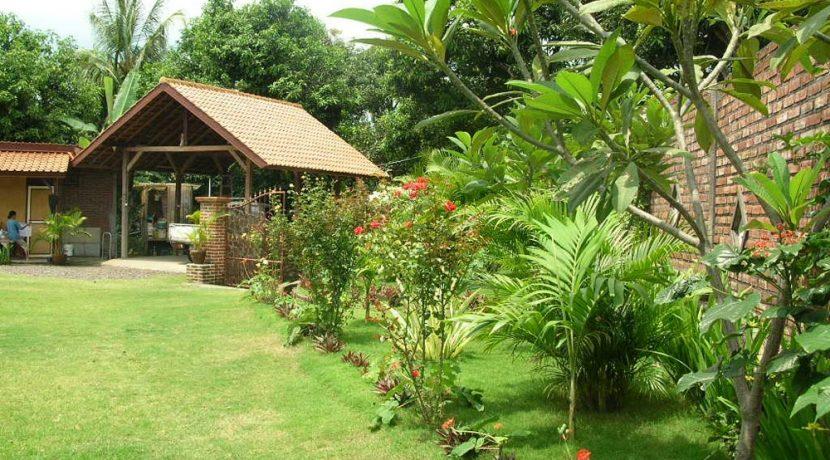 north-bali-lovina-villa-sale-garden