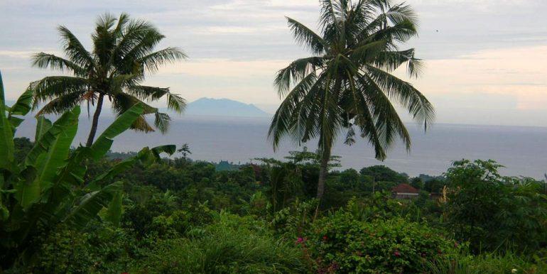 north-bali-lovina-villa-sale-view