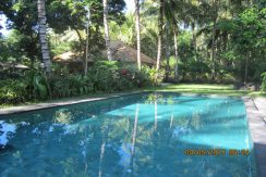 north east bali beach villa for sale pool