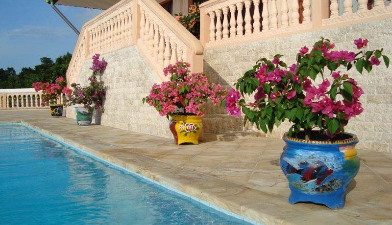 pool-flowers