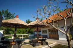 bali-lovina-riverside-villa-sale-pool