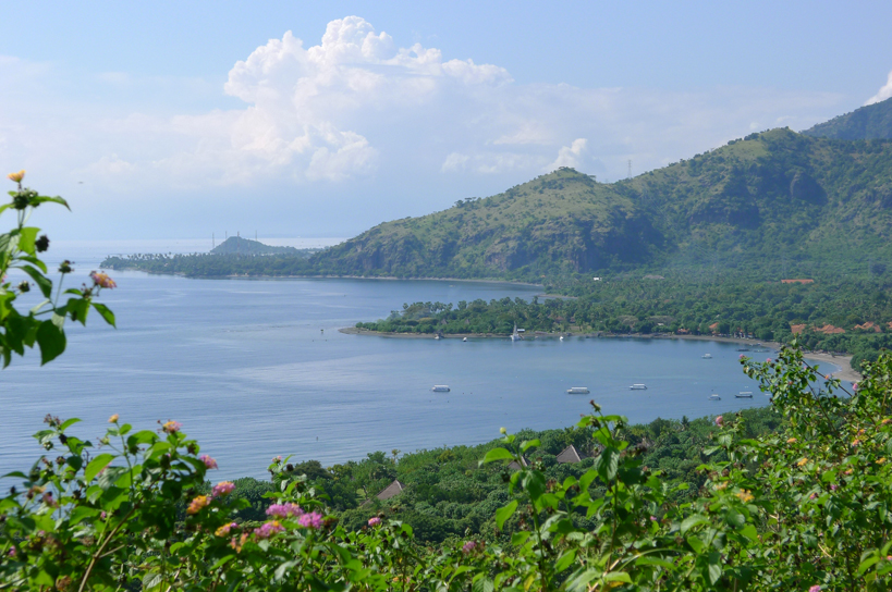 Bali land for sale in Pemuteran West Bali WB-L001