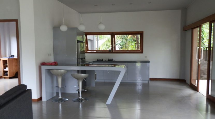 bali-lovina-hotel-business-for-sale-kitchen&living