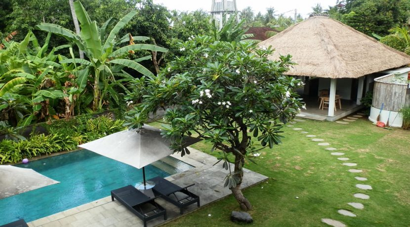 bali-lovina-hotel-business-for-sale-pool-view