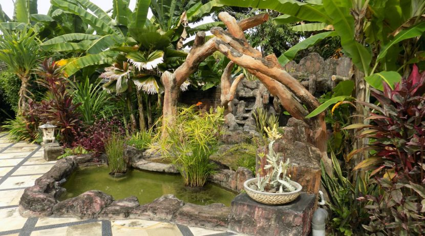 bali-lovina-beach-villa-sales-pond