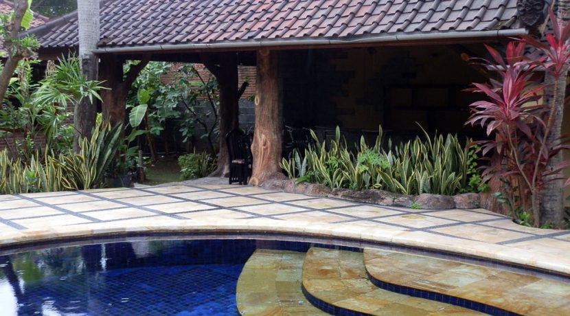 bali-lovina-beach-villa-sales-pool-bar
