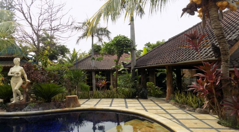 bali-lovina-beach-villa-sales-pool-bar-terrace