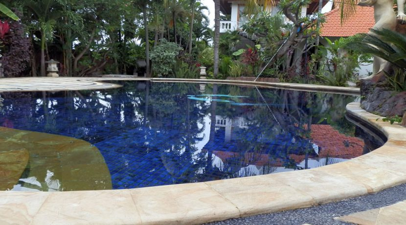 bali-lovina-beach-villa-sales-pool