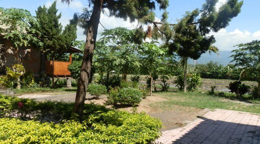 bali-yoga-retreat-resort-sale-view