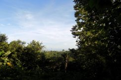 bali-sea-view-land-for-sale