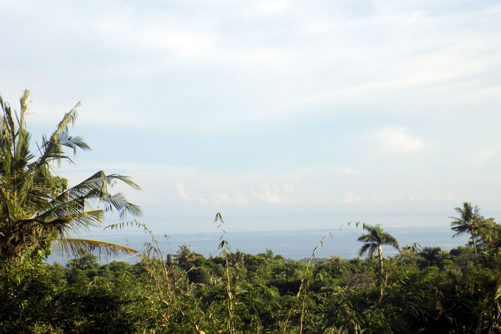 Bali Sea View Land NB-L012