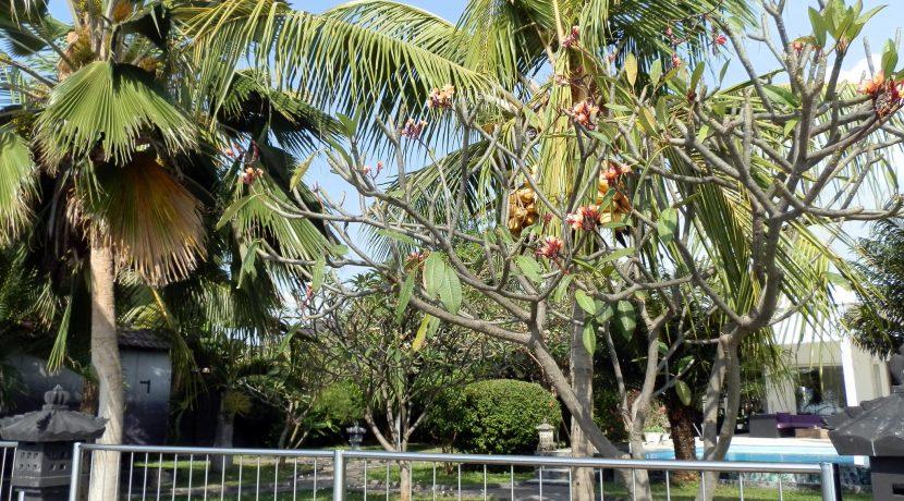bali-beachfront-villa-garden
