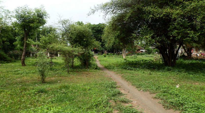 bali-pemuteran-land-for-sale-4