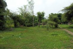 land for sale in pemuteran bali