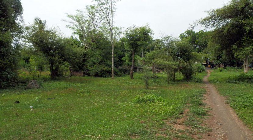 bali-pemuteran-land-for-sale