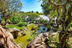 lovina-villa-estate-for-sale-garden