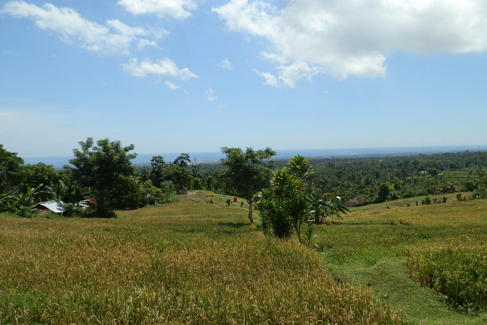 Bali land for sale cheap with spectacular ocean view