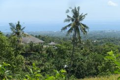 bali-land-for-sale-cheap-neighbourhood