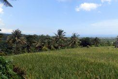 bali-land-for-sale-cheap-ocean-view