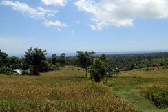 bali-land-for-sale-cheap-terraced
