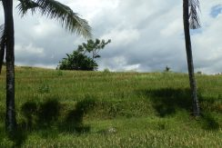 bali-land-for-sale-cheap-uphill
