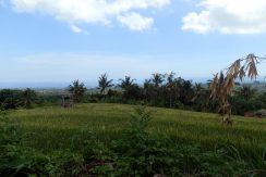 bali-land-for-sale-cheap-view
