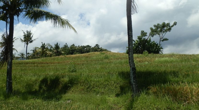bali-land-for-sale-cheap-view-uphill