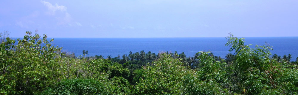 bali sea view villa for sale