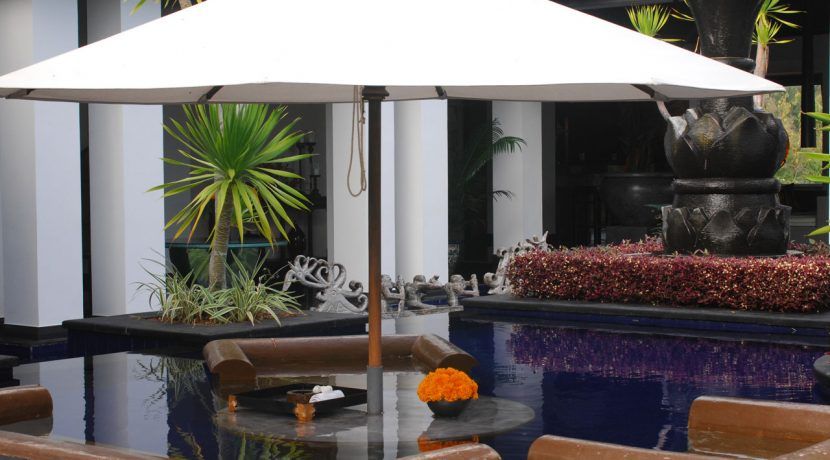lovina-hillside-villa-for-in-pool-lounge