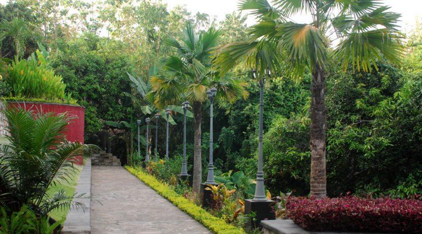 lovina-hillside-villa-for-sale-garden-2
