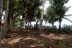 north-bali-beachfront-land-1