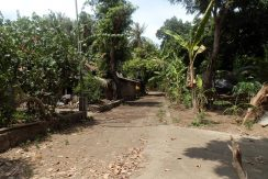 north-bali-oceanfront-land-access-road