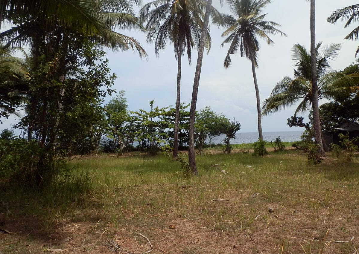 North Bali oceanfront land for sale