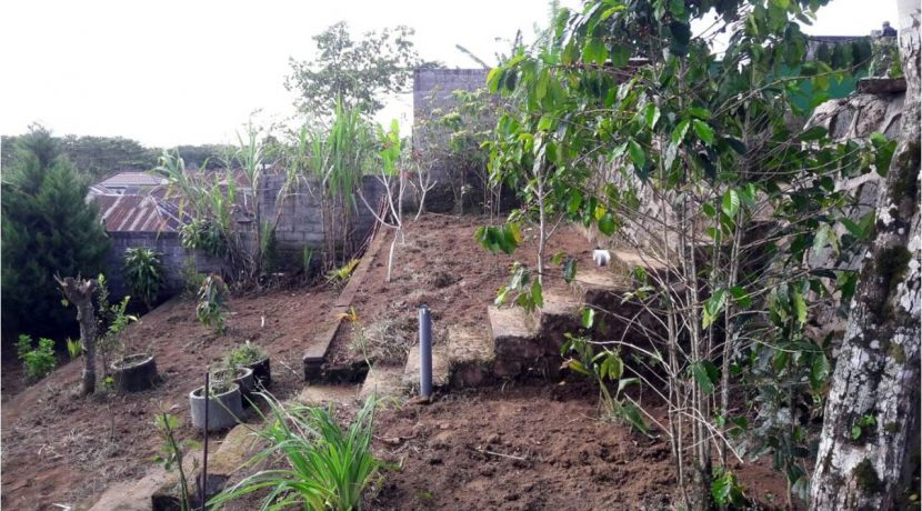 bali-mountain-land-for-sale-11