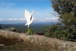 bali-mountain-land-for-sale-18