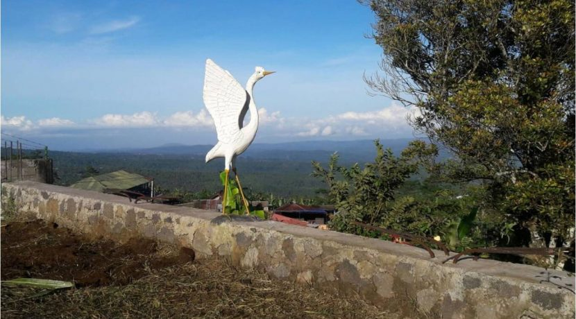 bali-mountain-land-for-sale-18