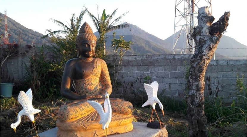 bali-mountain-land-for-sale-19