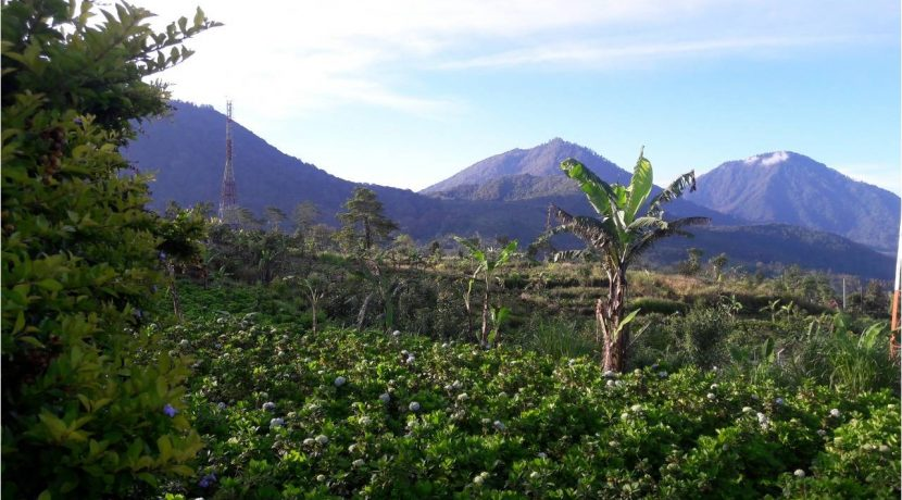 bali-mountain-land-for-sale-23