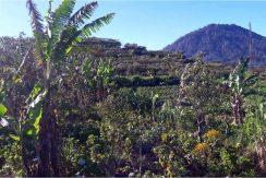 bali-mountain-land-for-sale-8