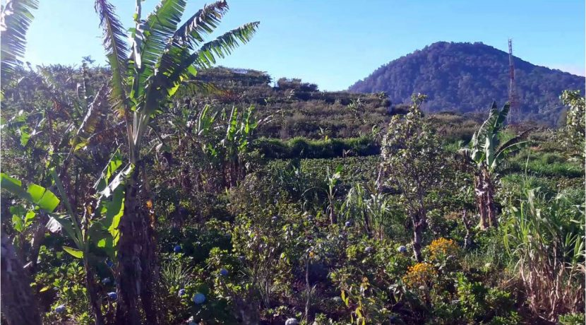 bali-mountain-land-for-sale-8