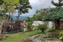 bali-villa-for-sale-garden