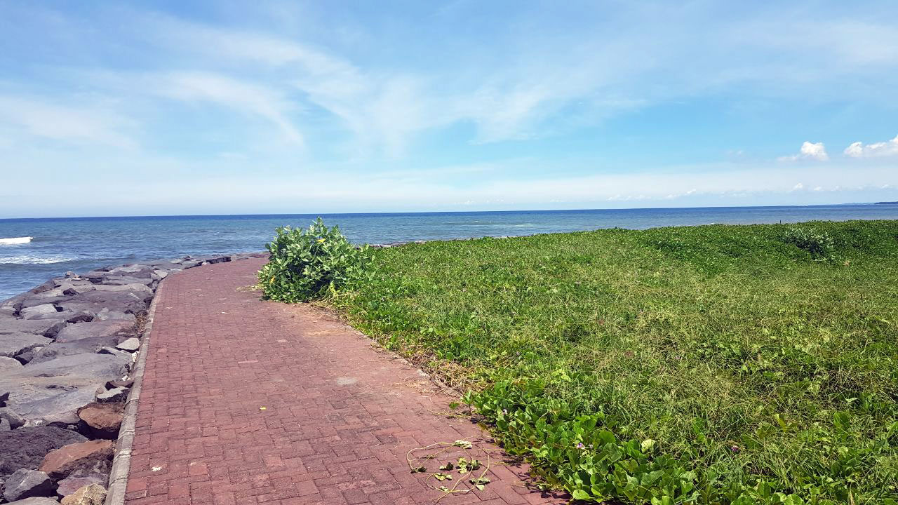Bali oceanfront land for sale